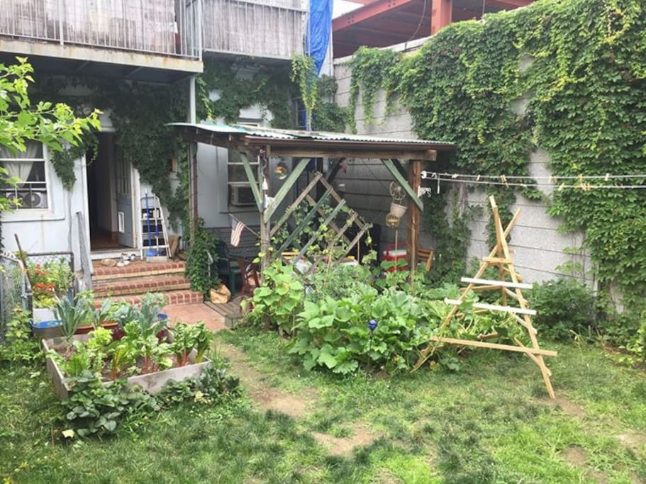 Our yard in the height of summer! Vegetable gardens &  covered patio