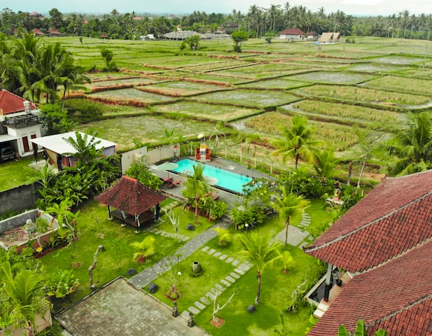 1BR Ricefield View Private Villa with pool in Ubud