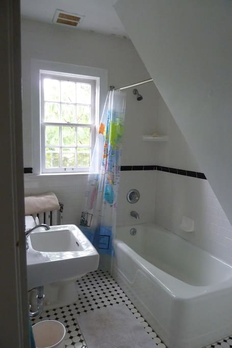Private Bathroom with great water Pressure Shower