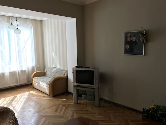 Comfortable Appartments in the Center of Tbilisi - Tbilisi - Apartment