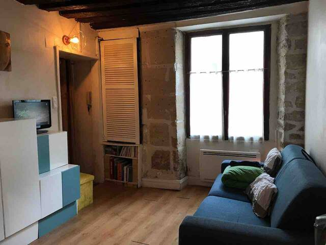 Charming studio St Germain des Pres