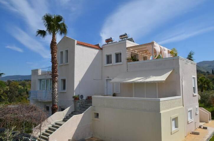 Platon Apartment