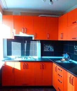 Прекрасная квартира в самом центре (ун-г КИЕВ) - 蘇梅