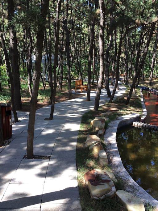 步行6分钟可达林海公园,天然氧吧,森林绿肺。