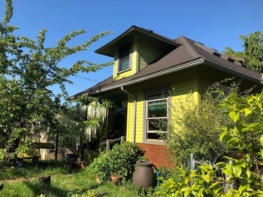 Our house, built 1908