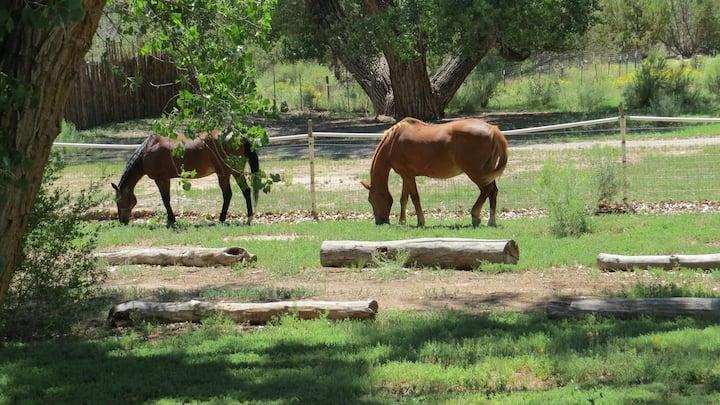 Casita de los Caballos ~ House of the Horses