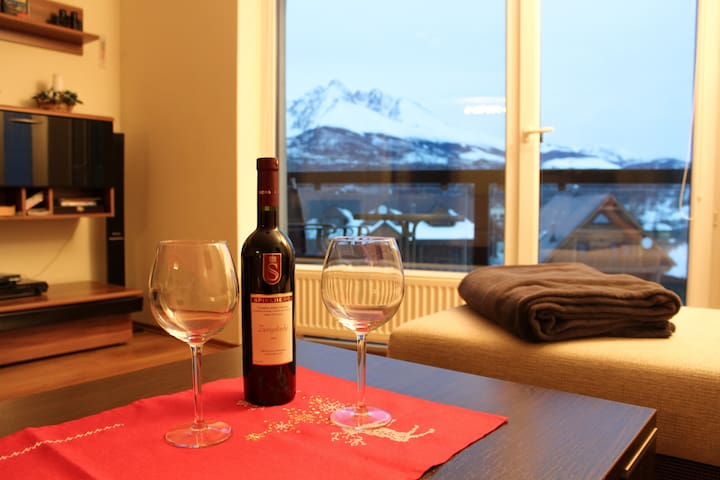 High Tatras apartment with a amazing view