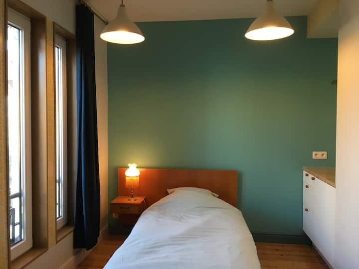 Rustige kamer tussen een natuurreservaat en Gent.