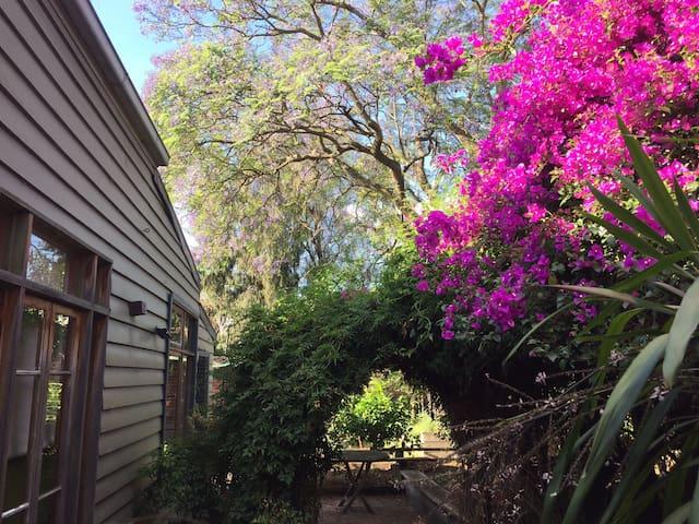 A picture says a thousand words: lush, pink, glorious fairy garden, bougainvillea, jasmine, jacaranda, quiet, green, fresh, beautiful, retreat....