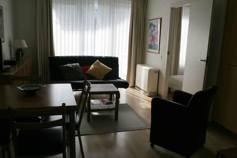 Cozy Apartment in Center