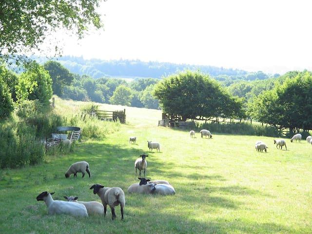 Hallwood Farm