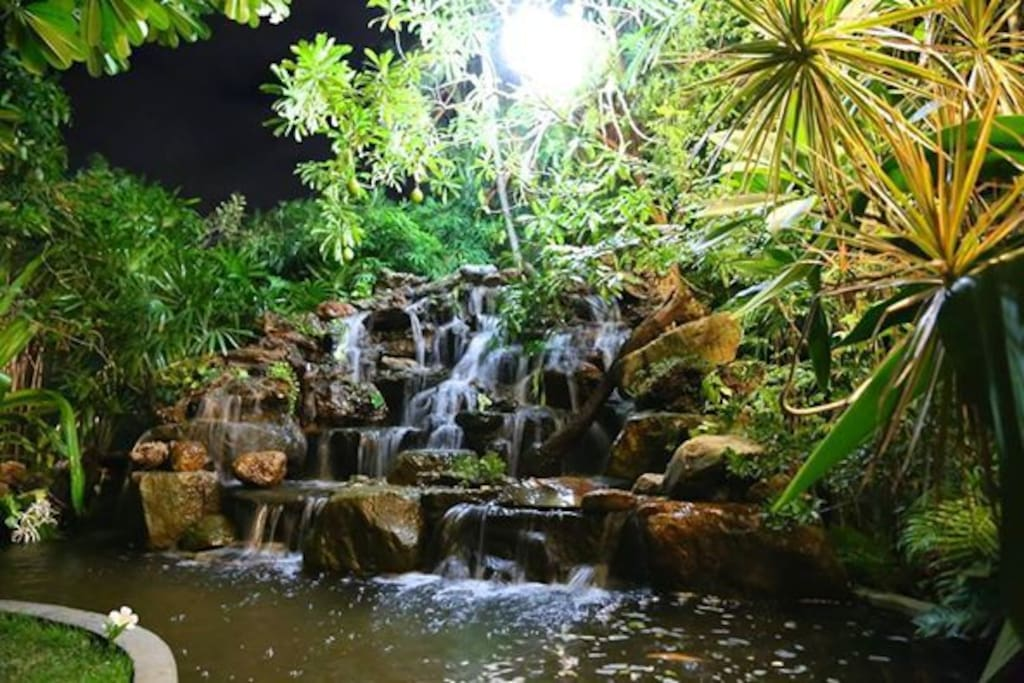 Waterfall in the back of the  garden