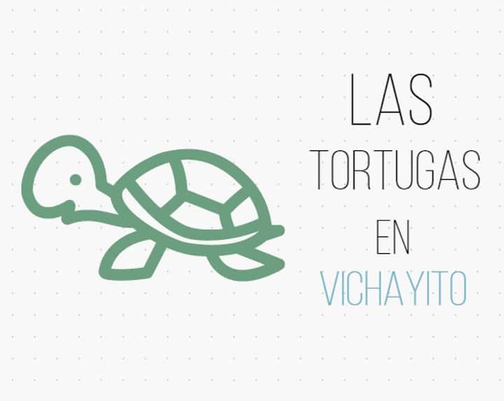 Las Tortugas en Vichayito ( Paz y Naturaleza )
