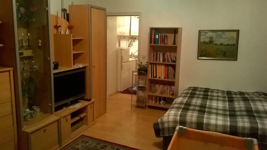 Wohnung in Wien in zentraler Lage - Wenen - Appartement