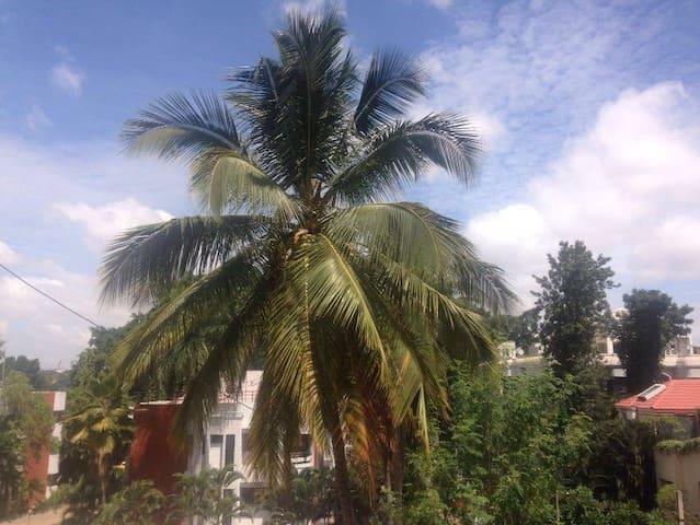 Bengaluru Apartment