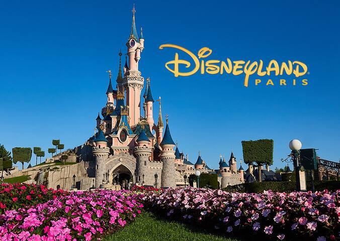 Charmant studio Tour d'Auvergne Lognes Disneyland