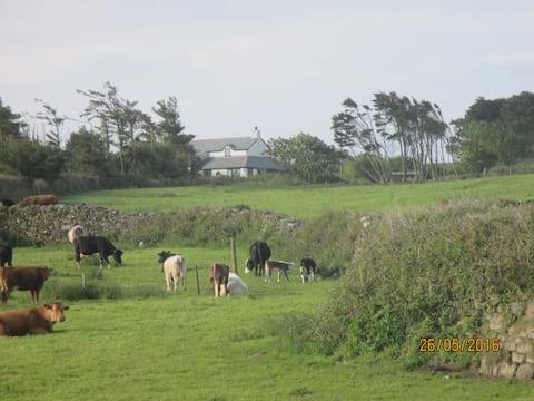 Pines at Carminowe Farm, a peaceful rural retreat