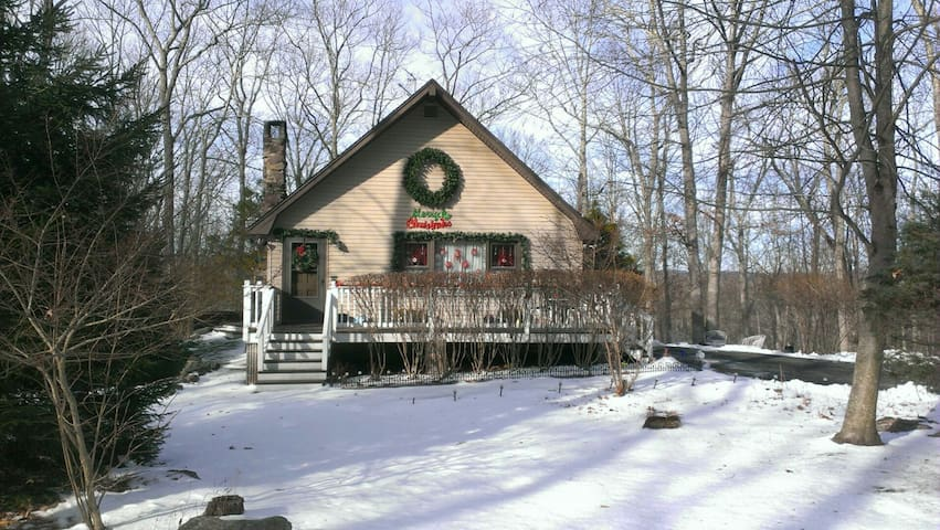 Snow Hill Falls Retreat - Cresco - House