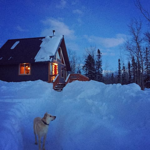 Into the wild.  Cabin off Thompson Pass