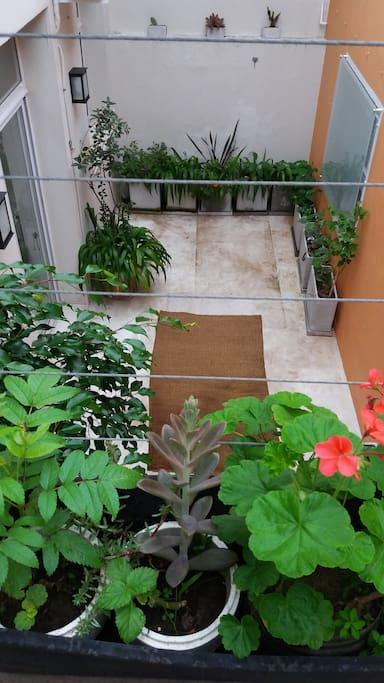 Patio privado y pequeña terraza