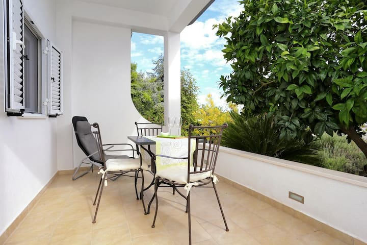 One bedroom apartment with terrace Seget Vranjica, Trogir (A-10328-b)