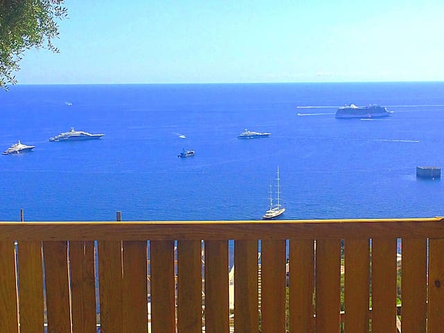 Sea View & Garden 1 street from Monaco Monte-Carlo