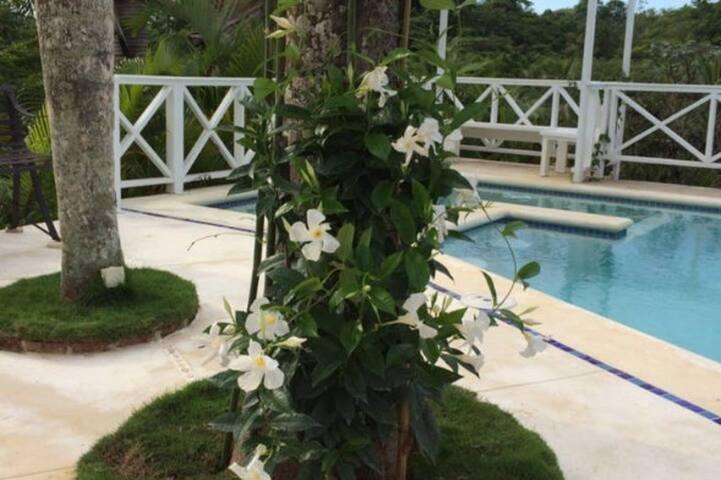 Jardines Las Terrenas Bungalow coco