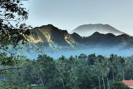 Kupu Kupu Villa, Candidasa: a Real Bali Experience - Manggis