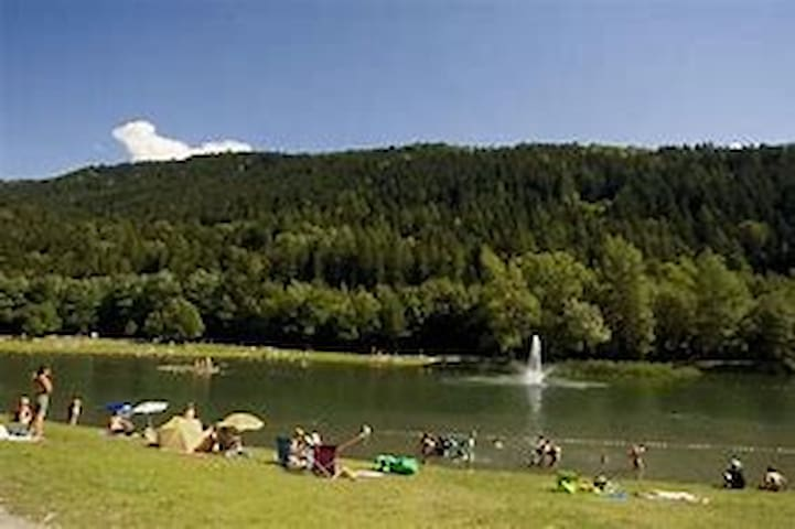 Le lac à 5 mn du logement
