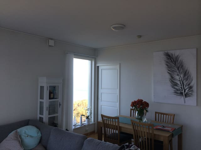 Beautiful panoramic view and nature - Tromsø - Appartement