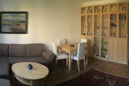 Renovated entire 3BD flat for you - Appartement