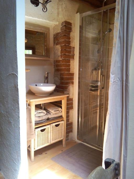 Chambre Sanglier - SdB avec douche