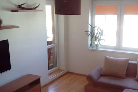 Mieszkanie 2 pokojowe na Zaspie