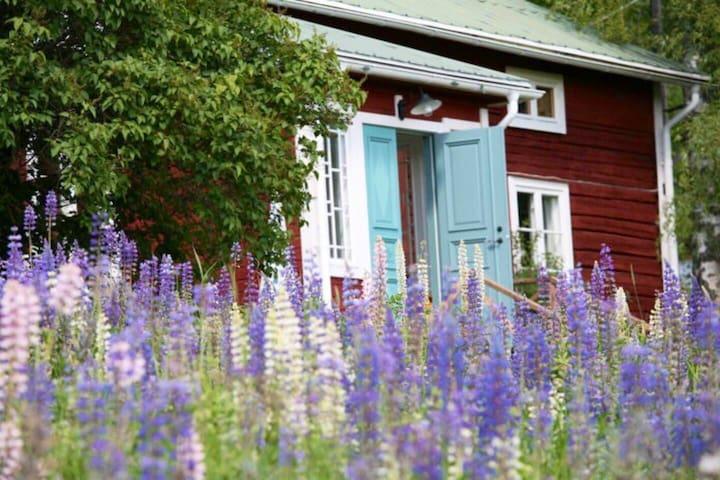 Charmigt, personligt, rofyllt & ostört nära Järvsö