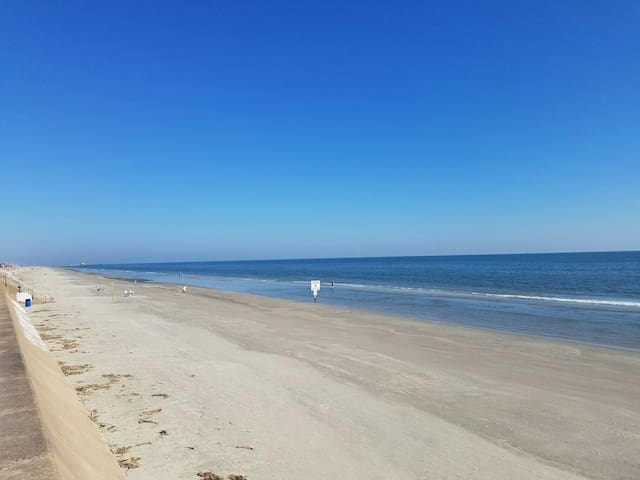 Beachfront complex! WiFi, smart TVs, full kitchen! - Galveston - Osakehuoneisto