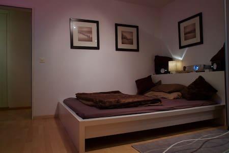 3 Room Olten-Rothrist - Rothrist - 公寓