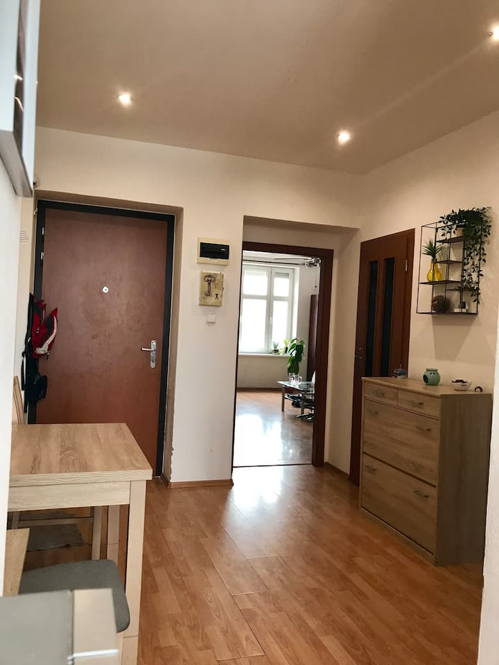 2019 IIHF 2rooms apartment (10 minutes from Arena)