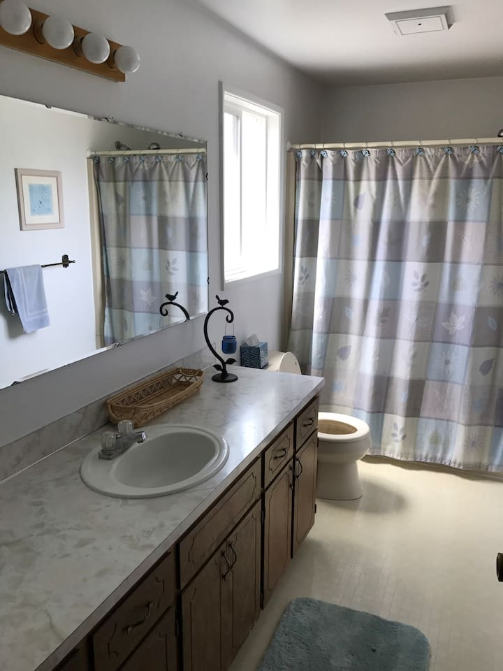 Private bathroom with tub and shower combo.