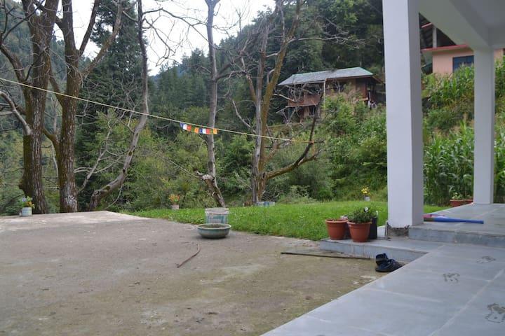 Thuji House