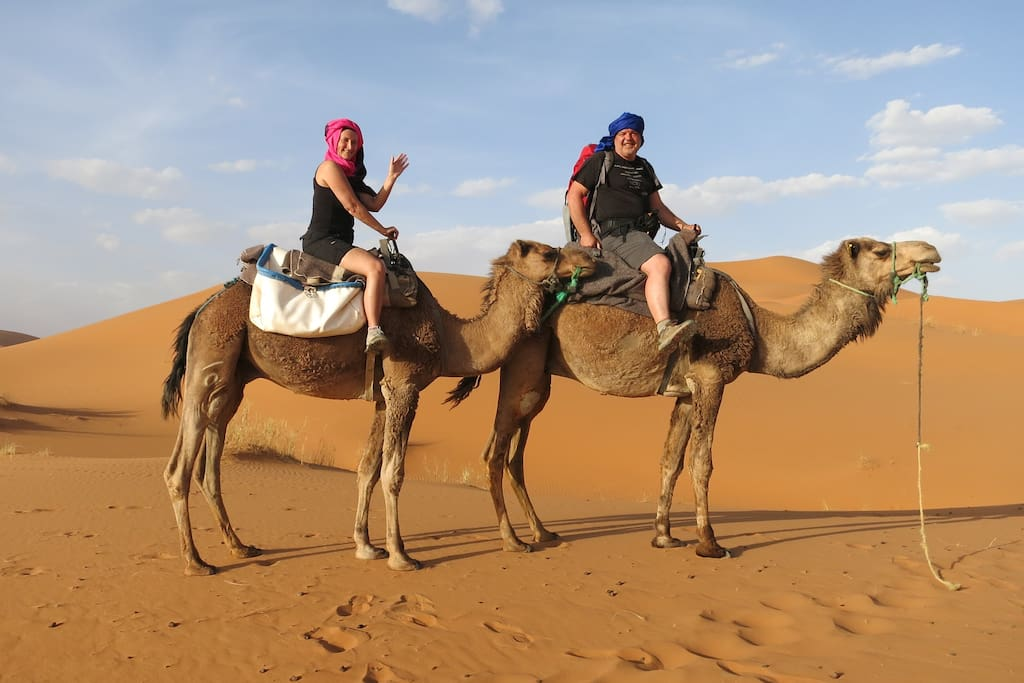 camel trik