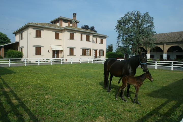 Spacious villa on estate with horse-breeding, with swimming pool and tennis court