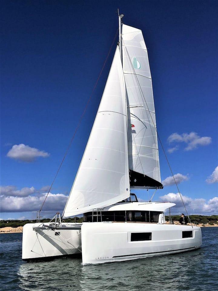 Luxury 2019 40ft Catamaran 12 guests