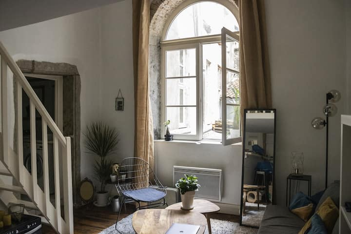 Appartement chaleureux dans l'hypercentre de Lyon