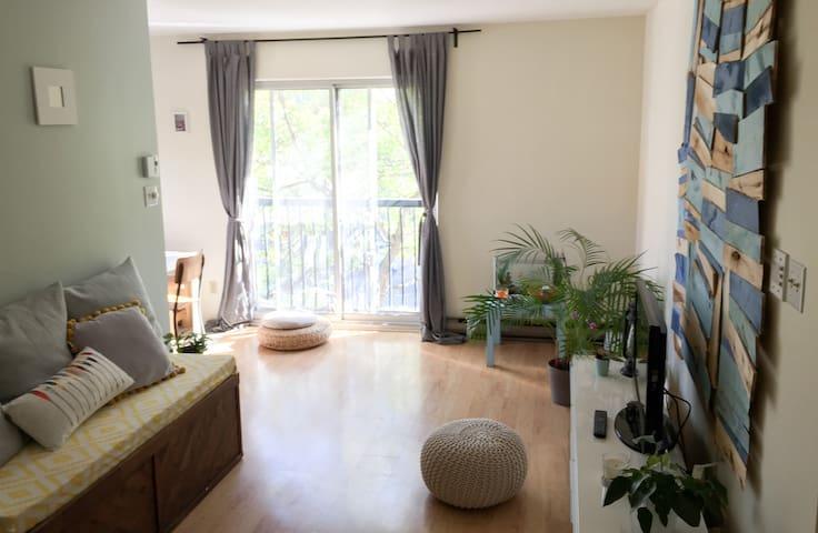 Cozy apartment - Montréal - Wohnung