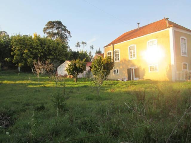 Casa de Campo Centenária com Pomar - Vila Nova de Poiares - Cabana