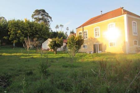 Casa de Campo Centenária com Pomar - Vila Nova de Poiares