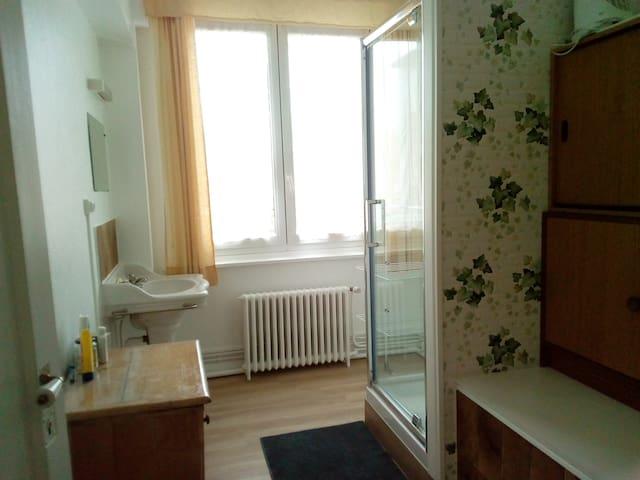 Salle de bain partagée avec une autre personne. Douche et lavabo le WC indépendant de la salle de bain est partagé aussi avec une personne