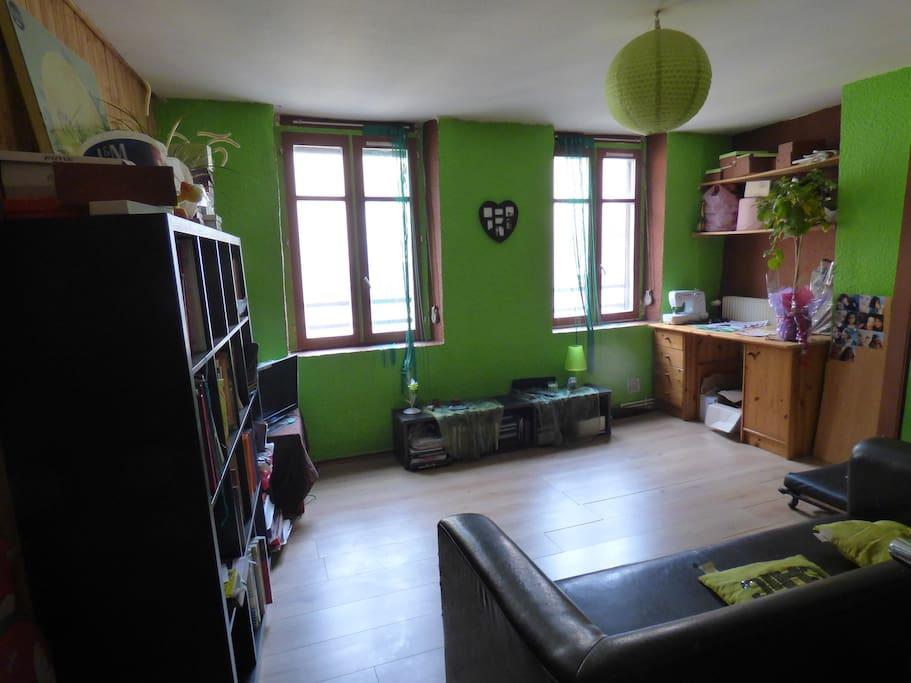chambre rue pietonne appartements louer grenoble auvergne rh ne alpes france. Black Bedroom Furniture Sets. Home Design Ideas