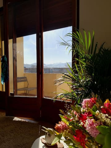 Sunny apartment near Geneva with Mont Blanc view