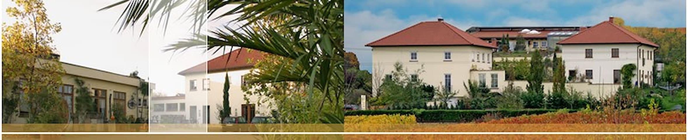 Einliegerwohnung auf einem Weingut - Bad Dürkheim - Apartamento